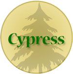 Cypress Networking for businesses